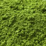 カラダアルファの成分とスピルリナの栄養バランスに迫る